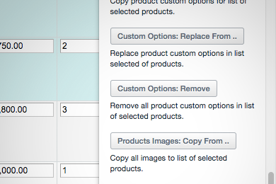 Remove custom options from products mass action
